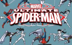 MARVEL UNIVERSE ULTIMATE SPIDER-MAN 14