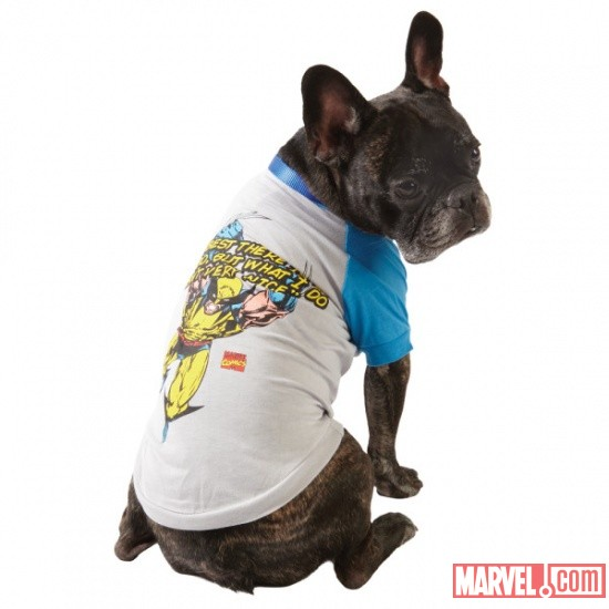 Wolverine Dog Tee by Fetch available at PetSmart