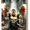 Punisher: In The Blood TPB