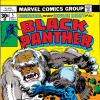 Black Panther (1976) #5 Cover