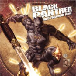 Black Panther: The Most Dangerous Man Alive  (2010 - 2012)