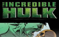 Incredible Hulk: The Fury Files (2008) #2