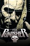 Punisher (2001 - 2003)