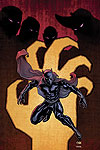 BLACK PANTHER (2006) #3 COVER