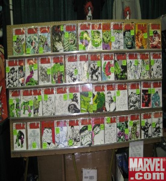 50 of the 100 The Hero Initiative exclusive HULK covers, on display at Emerald City Comic Con 2008