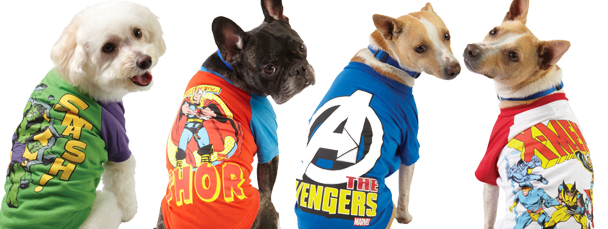 Marvel Pet Accessories Available Now at PetSmart