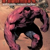 Hulk (2008) #42 Exclusive SDCC 2011 Ashcan cover by Patrick Zircher