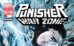 Punisher: War Zone (2012) #3 Cover