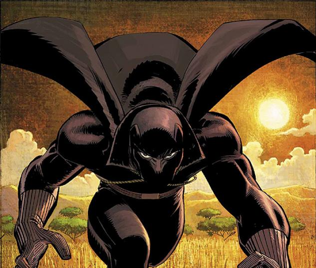 BLACK PANTHER (2005) #1 COVER