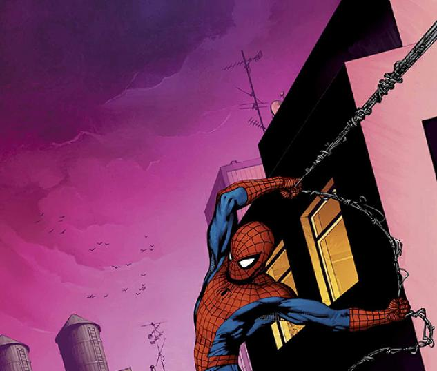 AMAZING SPIDER-MAN (2006) #517 COVER