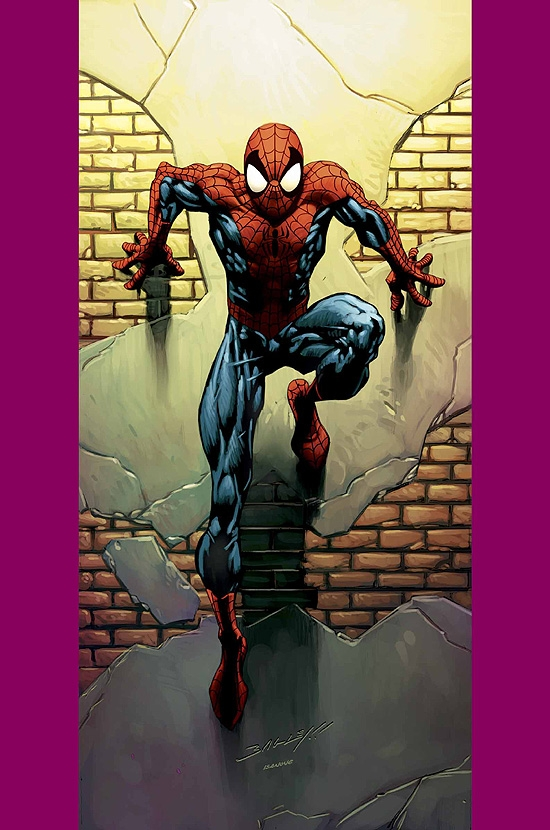 ULTIMATE SPIDER-MAN (2006) #72 COVER