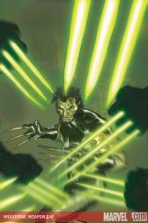 Wolverine Weapon X #2 