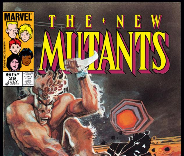 New Mutants (1983) #29 Cover