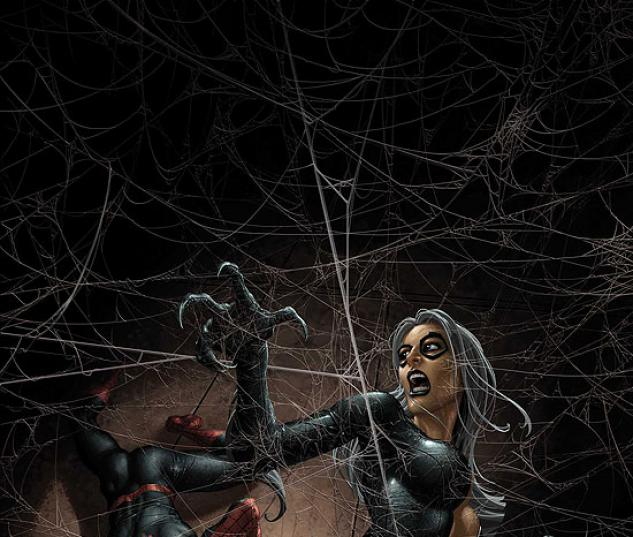 SENSATIONAL SPIDER-MAN (2008) #34 COVER