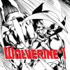 cover from Wolverine (2013) #1 (DAVIS SKETCH VARIANT)