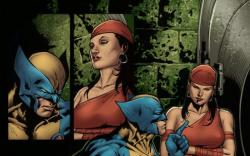 Image Featuring Luke Cage, Elektra, Iron Fist (Danny Rand)