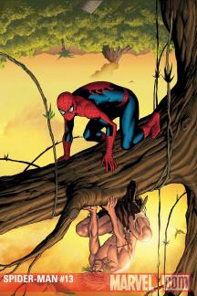Marvel Adventures Spider-Man (2010) #13
