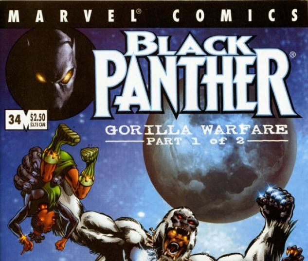 Black Panther #34