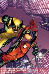 Astonishing Spider-Man &amp; Wolverine: Another Fine Mess #1 