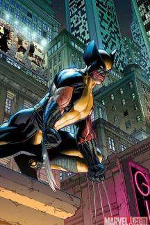 Wolverine (2010) #1 (MCNIVEN VARIANT)