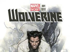 cover from Wolverine (2013) #1 (Coipel Variant)