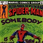 Peter Parker, The Spectacular Spider-Man (1976) #44 (Cover)