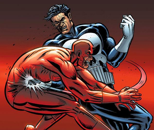 DAREDEVIL VS. PUNISHER (2007) #5 COVER