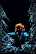 Spectacular Spider-Man (2003) #17