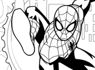 Ultimate Spider-Man Coloring