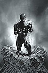 AMAZING SPIDER-MAN (2007) #527 COVER