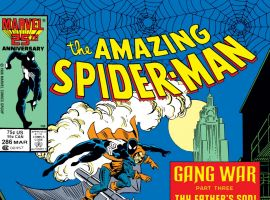 Amazing Spider-Man (1963) #286 Cover