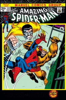 Amazing Spider-Man (1963) #111