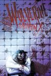 Wolverine Weapon X (2009) #6