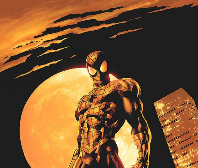 AMAZING SPIDER-MAN (2008) #528 COVER