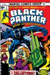 Black Panther (1976) #4 Cover