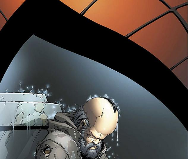 SPECTACULAR SPIDER-MAN (2005) #22 COVER