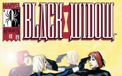 Black Widow: Breakdown (2001) #3