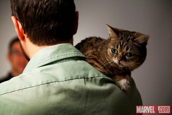 Lil Bub at Marvel HQ