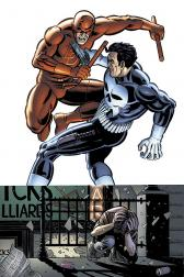 Daredevil Vs. Punisher (Trade Paperback)