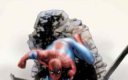 SPECTACULAR SPIDER-MAN (2003) #15 COVER