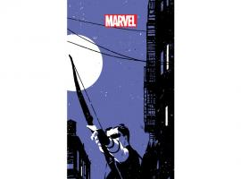 cover from Hawkeye (2012) #6 (2ND PRINTING VARIANT)