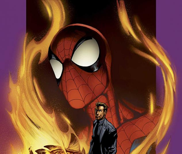 ULTIMATE SPIDER-MAN (2006) #73 COVER