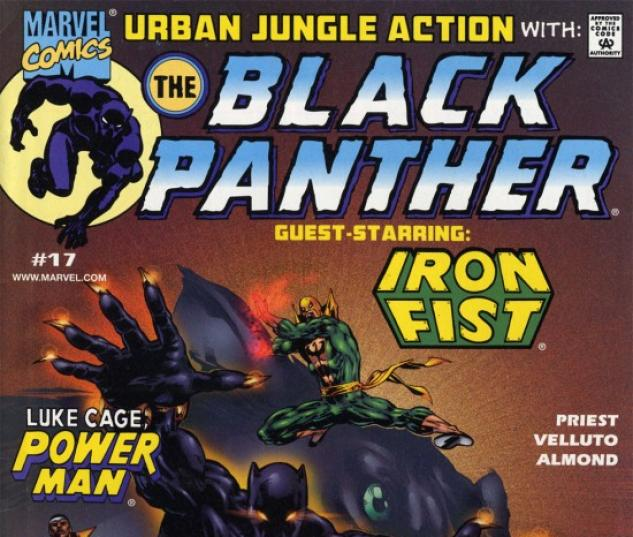 Black Panther #17