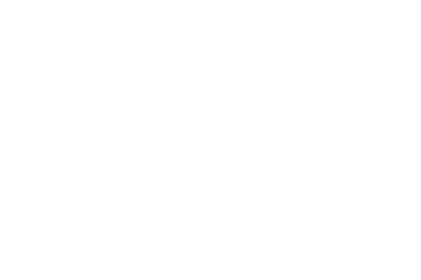 Captain America and the Falcon (2010) Trade Dress