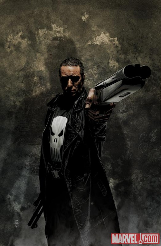 The Punisher by Tim Bradstreet
