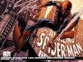 Amazing Spider-Man (1999) #600 (QUESADA WRAPAROUND VARIANT) Wallpaper
