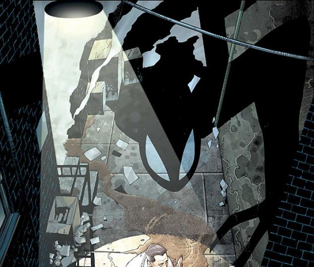 SPIDER-MAN: HOUSE OF M (2007) #2 COVER