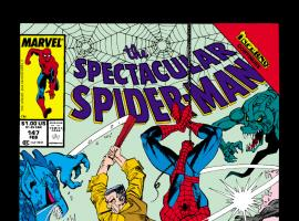Peter Parker, the Spectacular Spider-Man (1976) #147 Cover