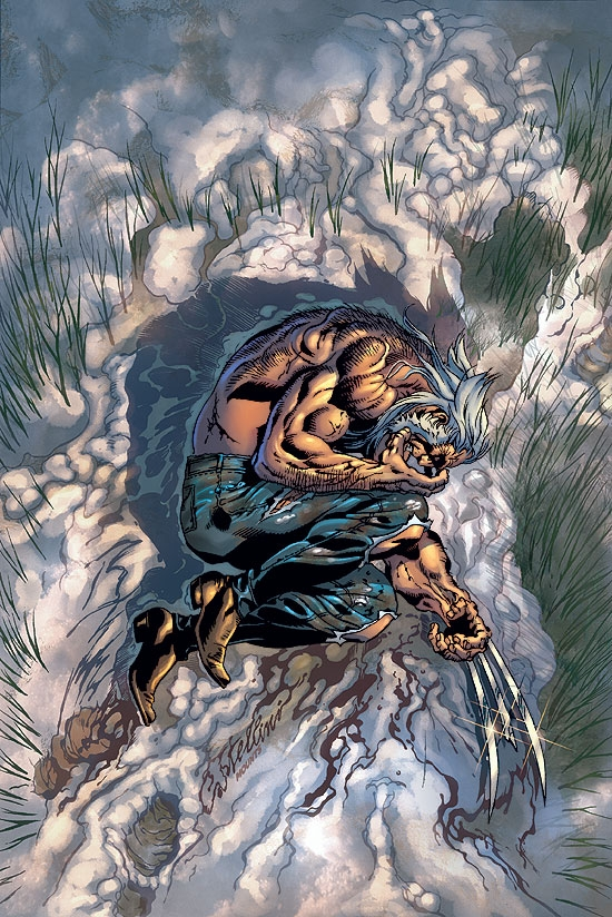 WOLVERINE: THE END (2003) #3 COVER